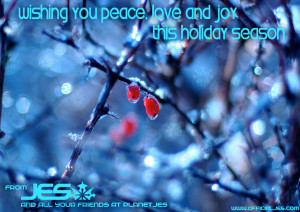 Holiday_B_2013